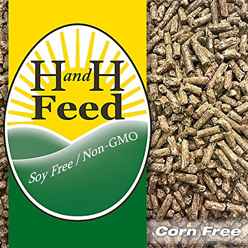 All Natural Mini-Pelleted Layer Feed Freshly Milled Hens Bantams: Non-GMO,Soy Free, Corn Free Organic Fertrell Vitamins Minerals (20lb)