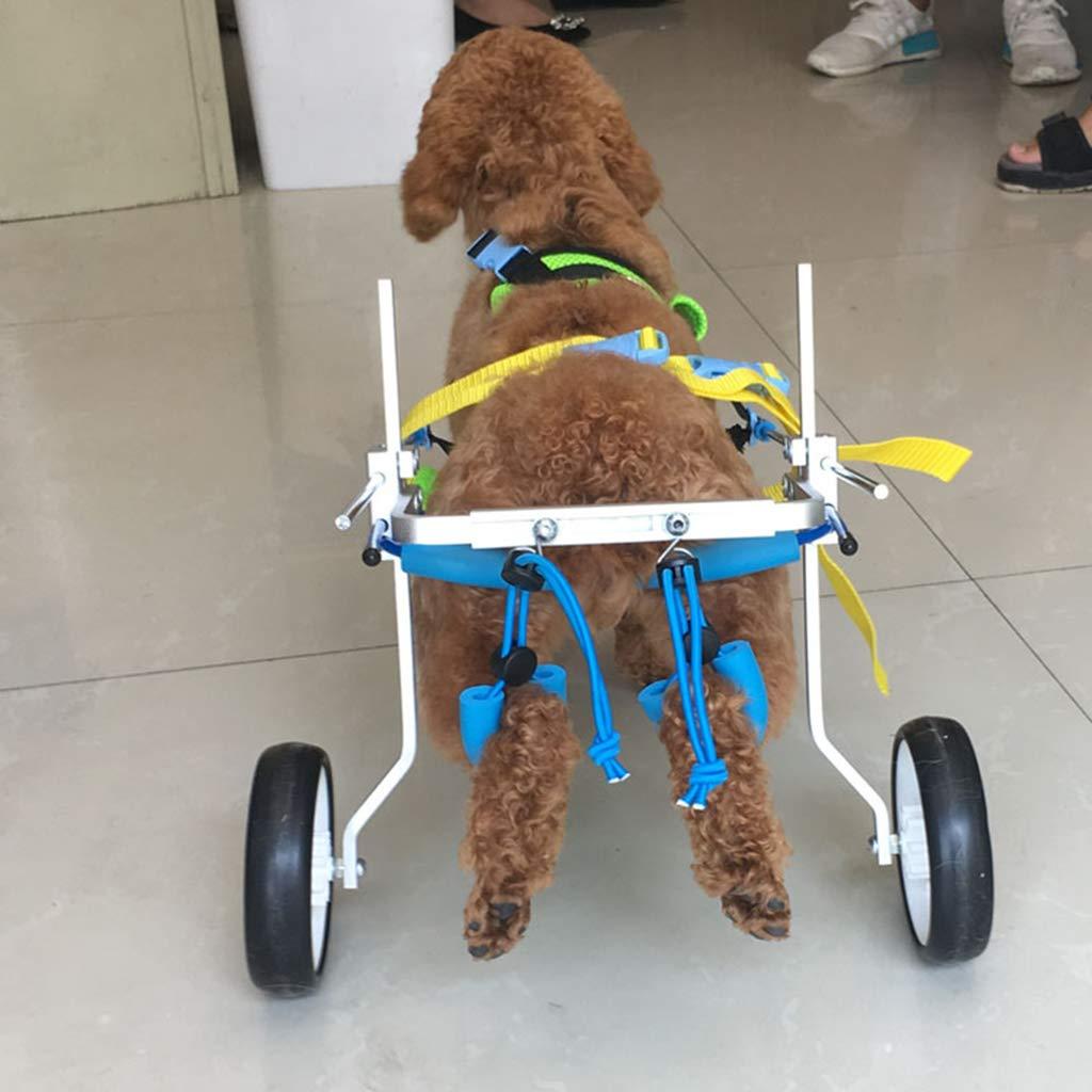 SM SunniMix Silla de Ruedas Mascotas Minusválidos Accesorios de Animales Doemsticos Resistente Duradero - M: Amazon.es: Juguetes y juegos