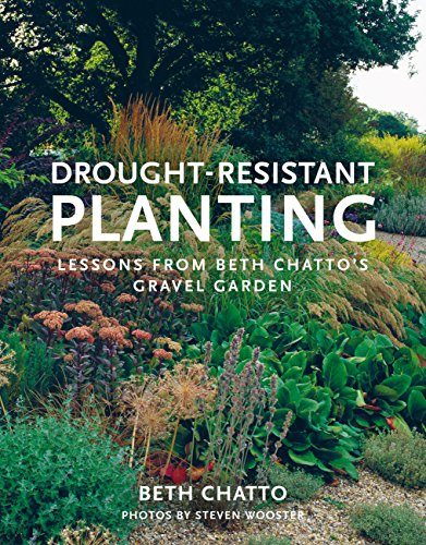 Cheap  Drought-Resistant Planting: Lessons from Beth Chatto's Gravel Garden