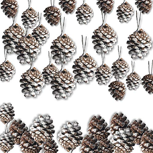Pinecones for Crafts - Set of 35 Frosted White Pine Cone Ornaments - Silver Strings Already Attached - Approx. 1 ½