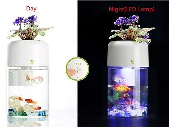 Smart acrílico acuaponia Acuario, Goldfish Bowl autolimpieza peces tanque con filtro y luz LED y con plantas en la pecera Top: Amazon.es: Productos para ...