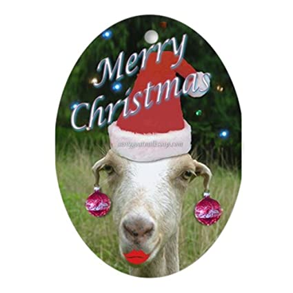 cafepress ruby the sassy christmas goat ornament oval oval holiday christmas ornament