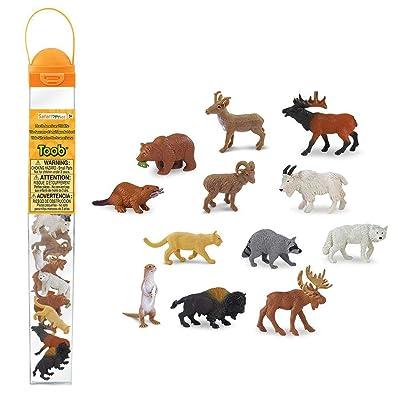 Safari Ltd. Wild Safari North American Wildlife TOOB With 12 Favorite Animal Toy Figurines: Toys & Games