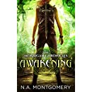 Awakening: The Morrigan Chronicles