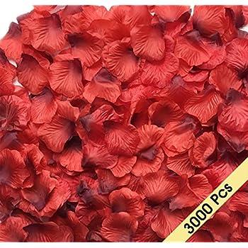 Amazon wholesale lot 2000 pcs opcc dark red silk rose petals newcool 3000 pcs dark red silk rose petals artificial flowers decorations wedding party vase home mightylinksfo