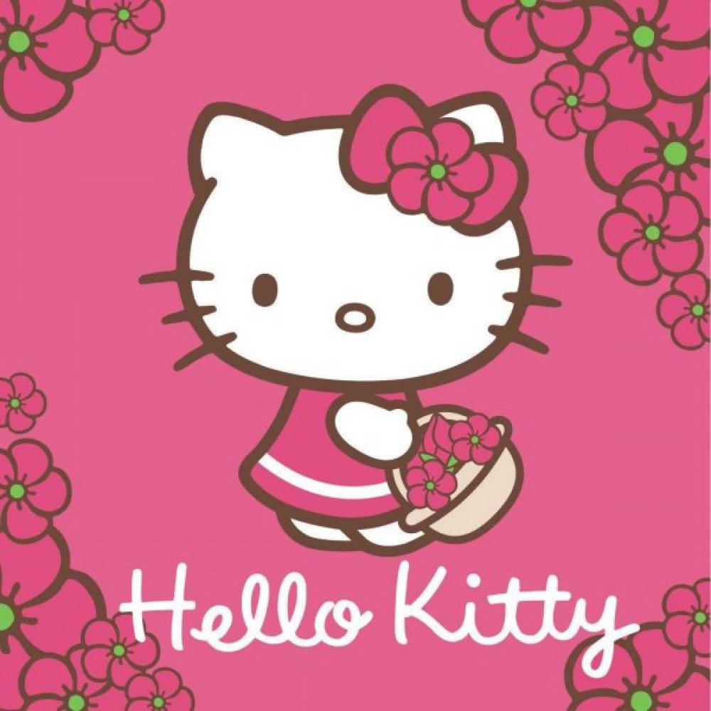 Hello Kitty Toalla de mano, 30 x 30 cm, algodón, manopla: Amazon.es: Hogar