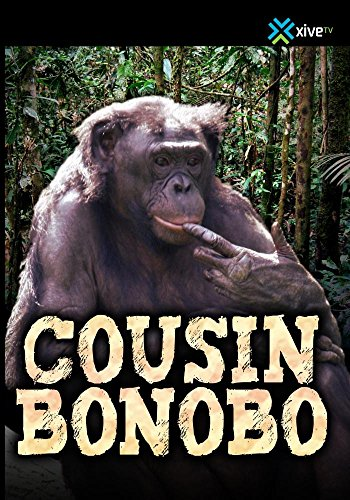 Cousin Bonobo