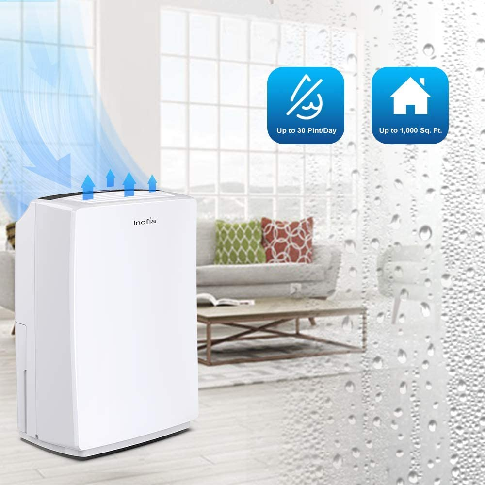 Inofia 30 Pint Dehumidifier for Home Basements Kitchen Compact Electric Dehumidifiers for Quiet /& Efficient Intelligent Humidity Control on Small//Medium Rooms up to 1000 sq ft Bedroom Bathroom