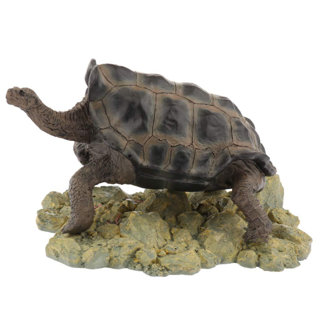 Type 1 Homyl Turtle Shape Aquarium Decorations Hideout Small Decor for Fish Tank Terrarium Type 1