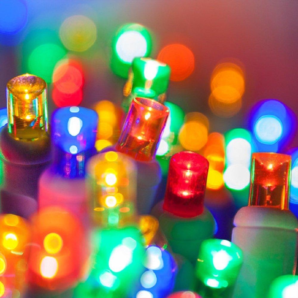 Amazon.com : Holiday Essence 60 LED Mini Christmas Lights, Multi ...