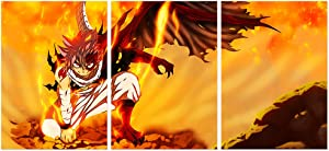 Jackethings Japanese Anime Fairy Tail Poster Natsu Dragneel Prints on Canvas 20x28inx3pcs Unframed Wall Art Decoration for Home Living Room Club Decor