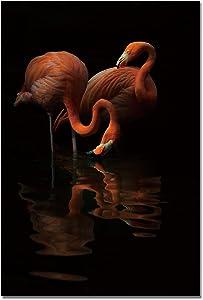 WunderBoard - Aluminum Metal Wall Art Decor Flamingos, Art Prints Framed (24 x 36 inches)