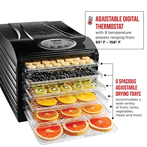 Buy what is the best food dehydrator to buy