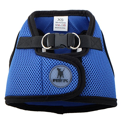 0.75' Snap Hook (Sidekick Harness, Royal Blue, XXL)