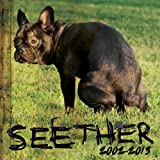 Seether: 2002 to 2013 - Seether