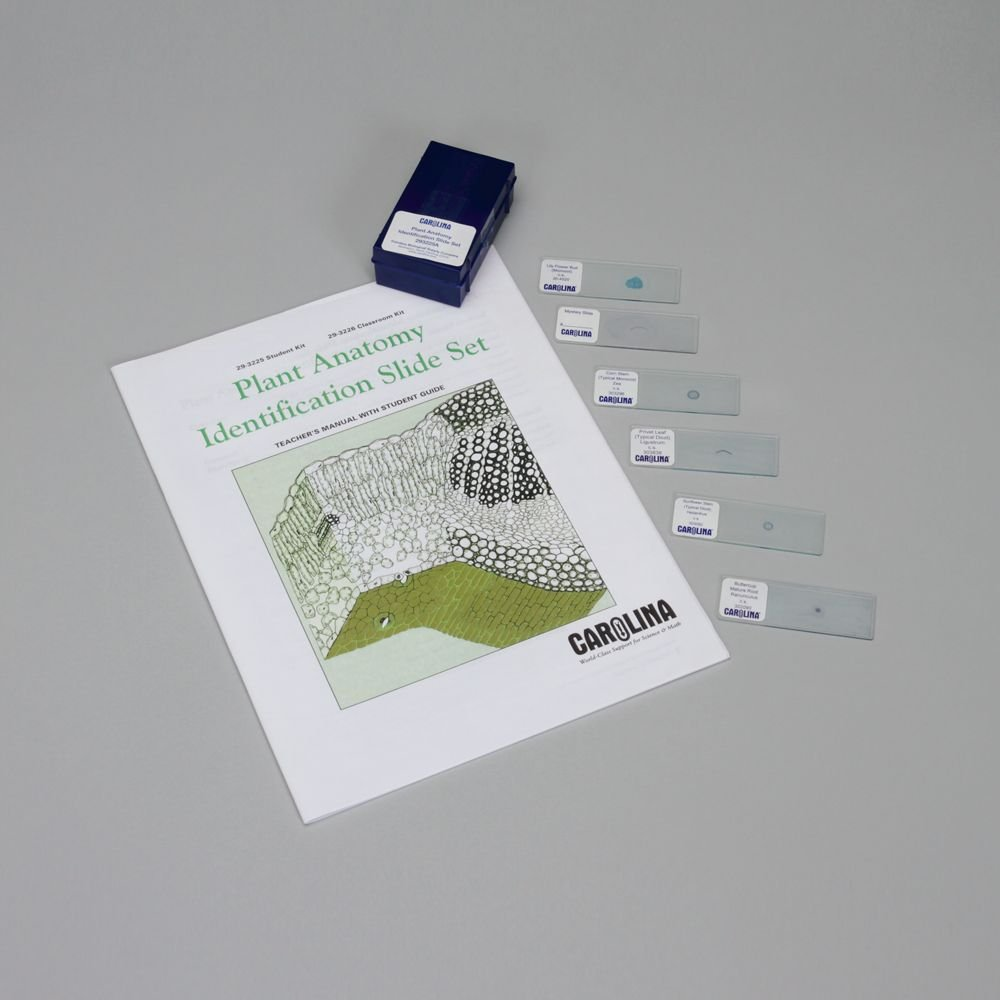 Plant Anatomy Identification Student Microscope Slide Set by Carolina Biological Supply Company