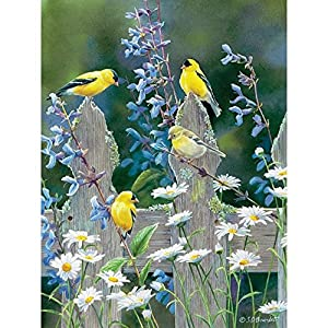 Cobblehill 85037 500 Pc Goldfinch Quartet Puzzle Vari