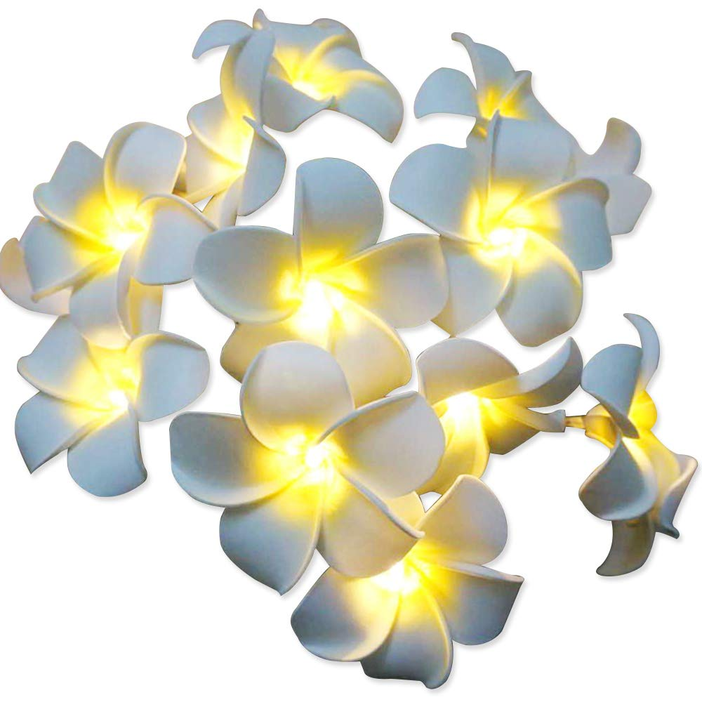 Amazon.com: AceList 20-LED String Light Hawaiian Foam Artificial ...