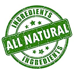 Dr. GreenPet All Natural Flea Control, Flea & Tick Prevention for Dogs & Cats - 32oz Spray