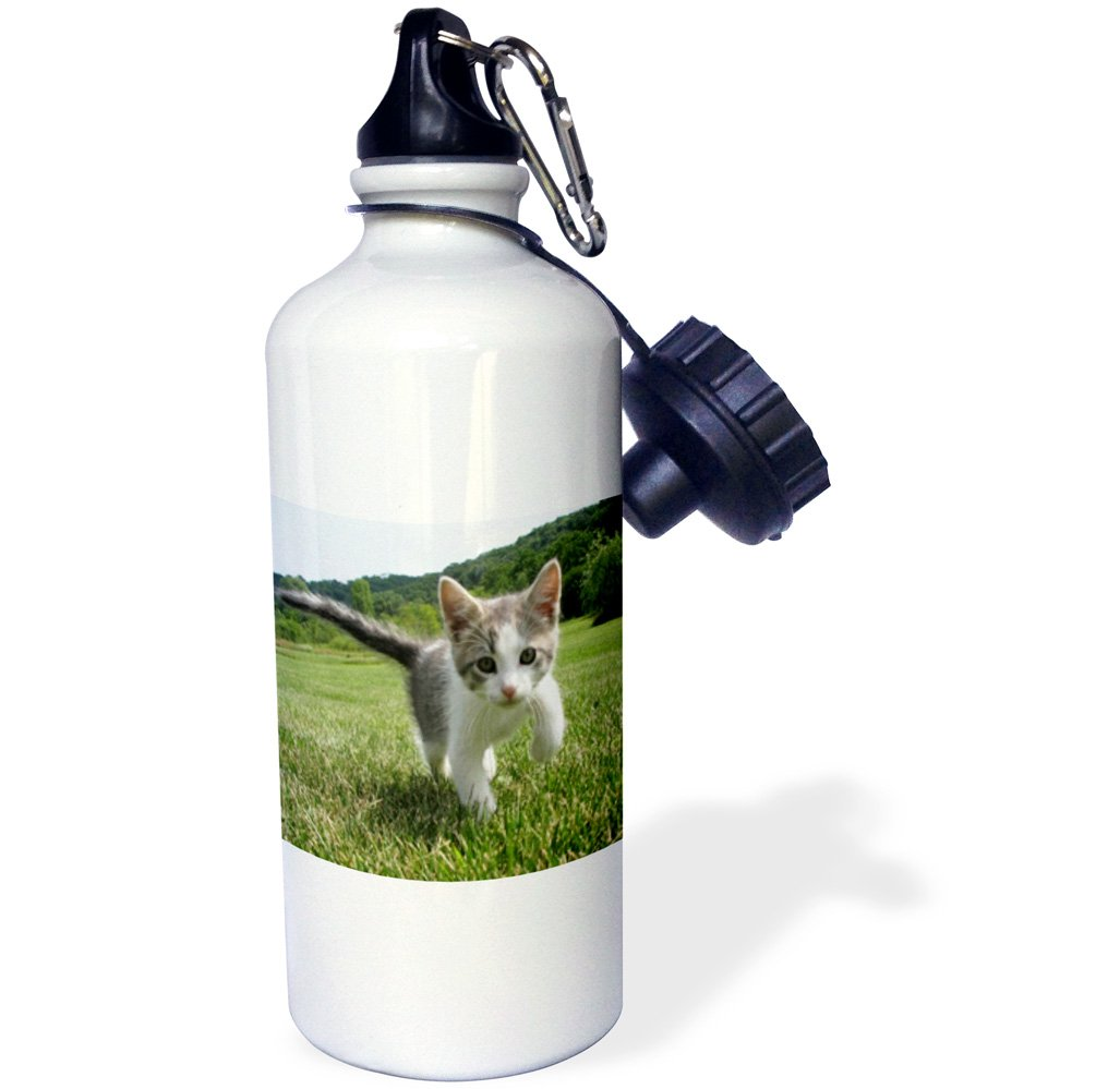 3D Rose 2 wb/_240673/_2 Flip Straw Water Bottle 21 oz