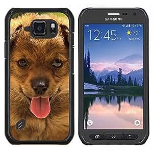 Boyero de Berna Pequeño perrito- Metal de aluminio y de plástico duro Caja del teléfono - Negro - Samsung Galaxy S6 active / SM-G890 (NOT S6)