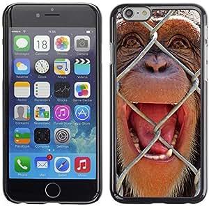 YOYO Slim PC / Aluminium Case Cover Armor Shell Portection //The Chimpanzee //Apple Iphone 6 Plus 5.5
