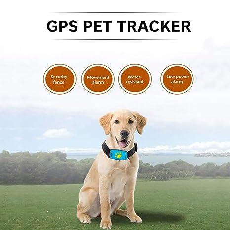 FXQIN Rastreador de GPS para Mascotas - Dispositivo ...