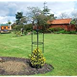 Obelisco de acero de jardín para plantas trepadoras y rosales