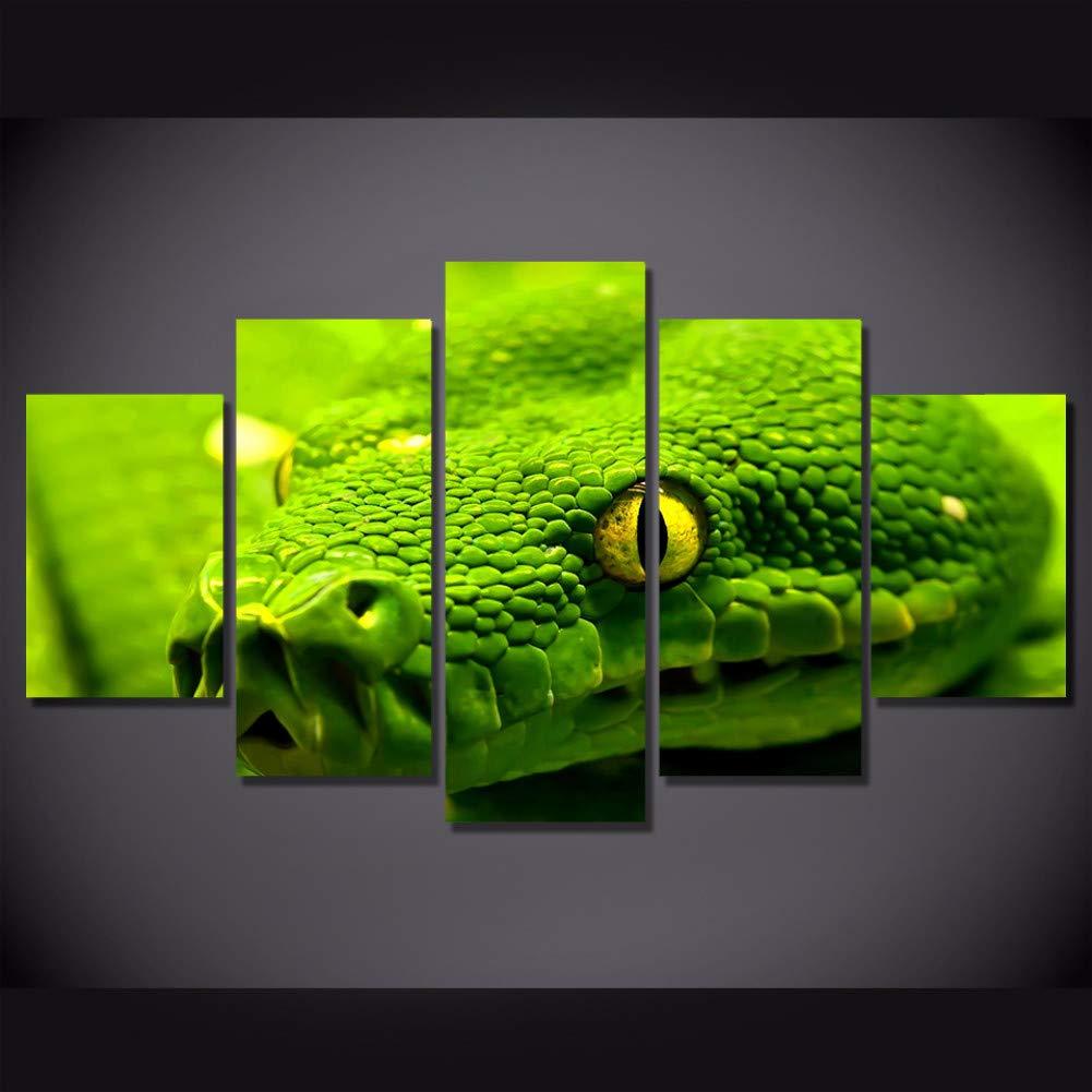 Cuadros serpiente