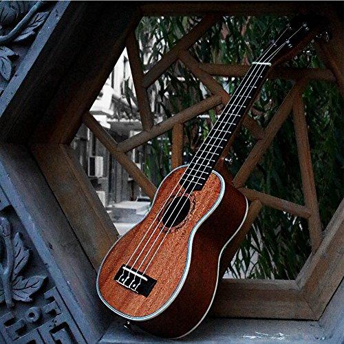 HQS-21-Ukull-Soprano-Sapele-15-Frettes-en-Bois-Instrument-Marron-Neuf
