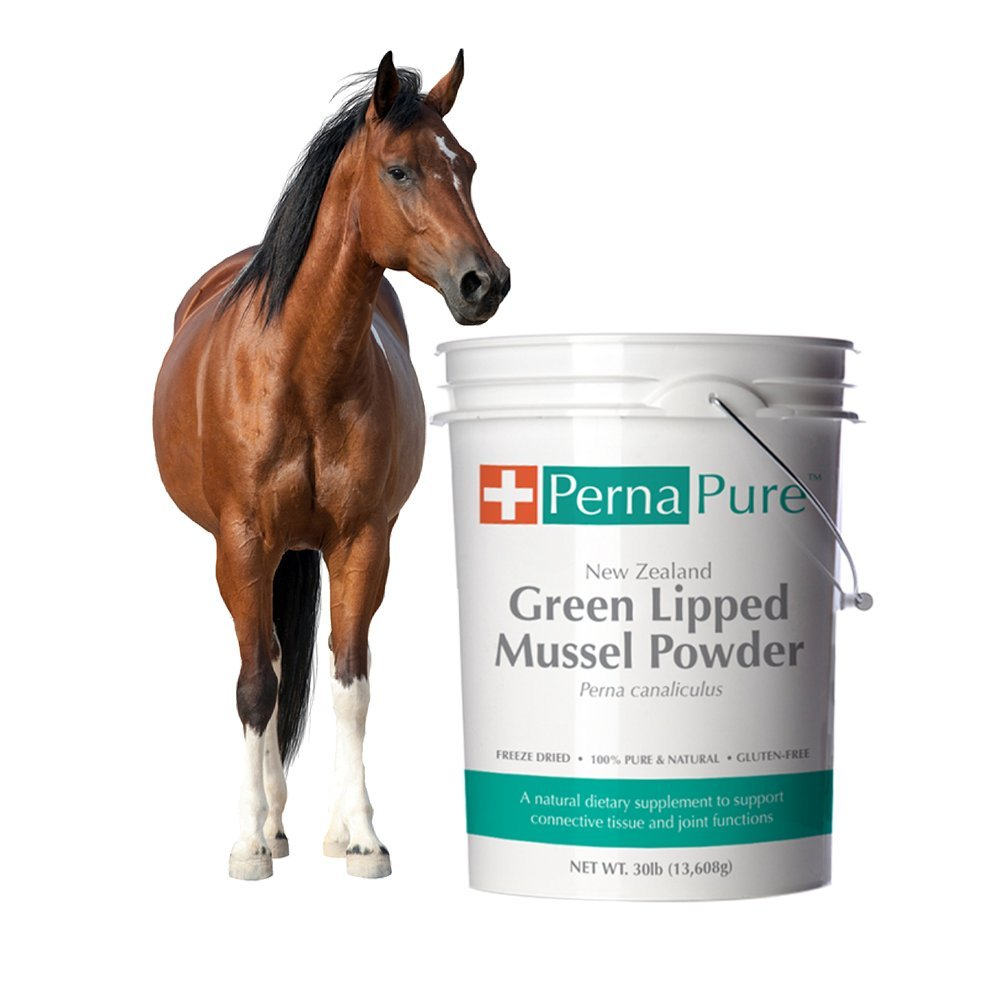 PernaPure Green Lipped Mussel Powder - Canine, Feline, Equine Joint Health Supplement - New Zealand Freeze Dried 100% Pure (30lb)