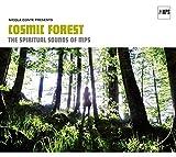Nicola Conte Presents Cosmic Forest