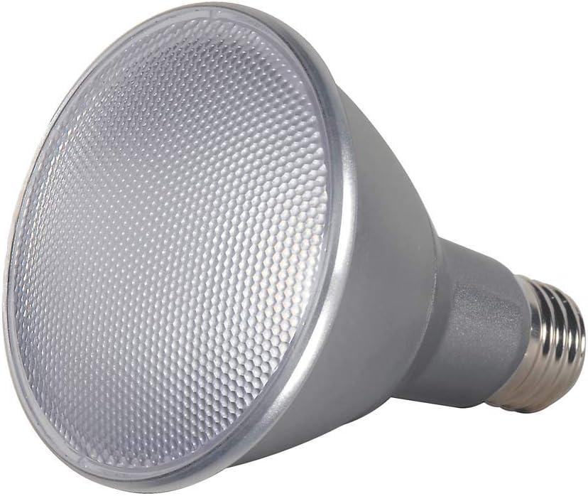 Clear Satco S8496 Medium Bulb in Light Finish