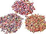 Fimo Slices 3000 Pieces For Nail Art Decor: 1000 pcs each: Fruit, Flower, and hearts 3D Assorted Nail Art Decorations Polmer Clay Sticks cut DIY slime goo floater or Nail Sticker