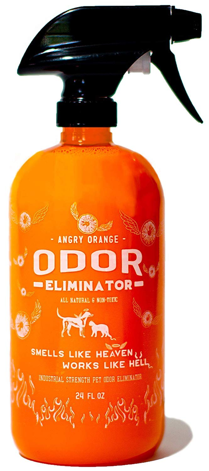 ANGRY ORANGE 24 oz Ready-to-Use Citrus Pet Odor Eliminator Pet Spray - Urine Remover and Carpet Deodorizer for Dogs and Cats by ANGRY ORANGE
