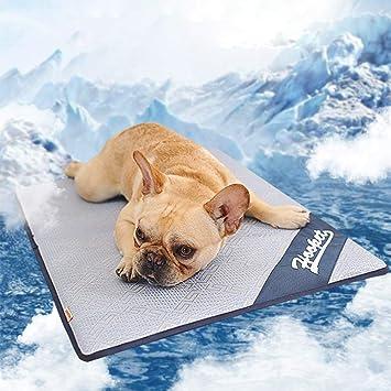Amazon.com: Miro Kur Mascotas Verano Refrigeración Ropa de ...