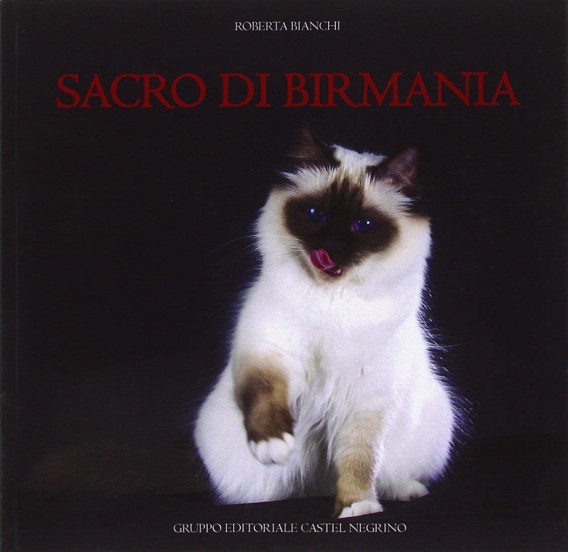 Amazonit Sacro Di Birmania Roberta Bianchi S Caratozzolo Libri