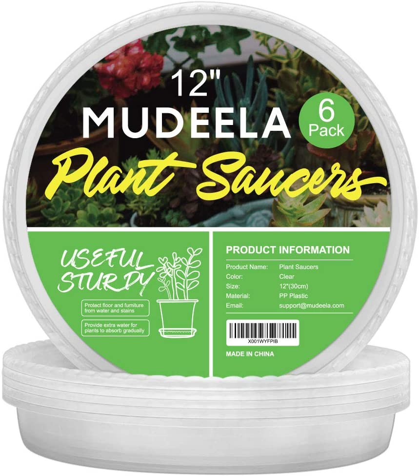 MUDEELA 6 Pack of 12 inch Plant Saucer, Durable Plastic Plant Trays for Indoors, Clear Plastic Flower Plant Pot Saucer, Made of Thicker, Stronger Plastic, with Taller Design : Garden & Outdoor