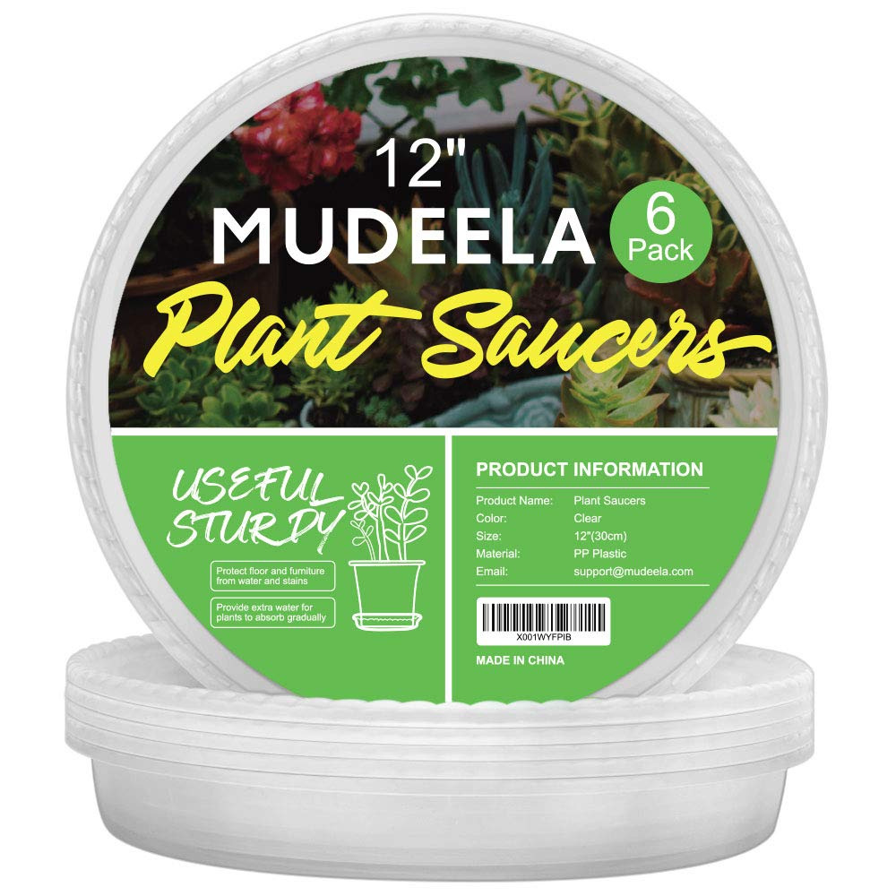 MUDEELA 6 Pack of 12 inch Plant Saucer, Durable Plastic Plant Trays for Indoors, Clear Plastic Flower Plant Pot Saucer, Made of Thicker, Stronger, Recyclable Plastic, with Taller Design