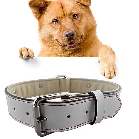 HongGXD Excelente Collar de Perro Grande de Cuero, Seda roja ...