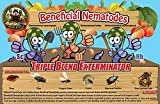 Live Beneficial Nematodes Hb+Sc+Sf - Kills Over 200 Different Species of Soil Dwelling and Wood Boring Insects. offers