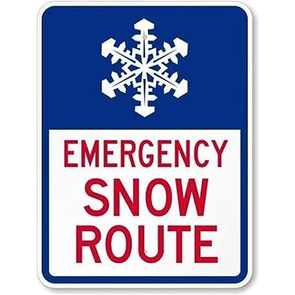Amazon.com: Ruta de nieve de emergencia (con cartel de ...