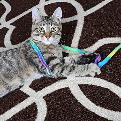 Cat Dancer Cat Toy Cat Charmer Safe Wand Teaser Colorful Fabric Ribbon Safe Flexible Exercise Toy 1 Pack