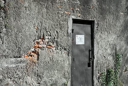 Amazon com: Home Comforts Peel-n-Stick Poster of Brick Wall