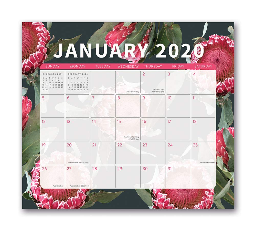 A Perfect Circle Tour 2020.Orange Circle Studio 2020 Magnetic Monthly Calendar Pad