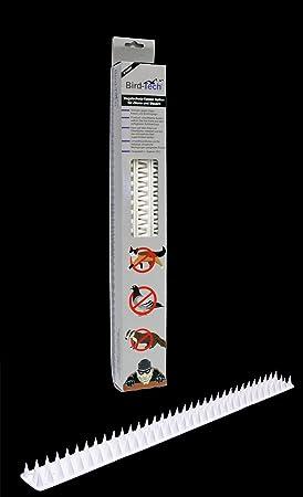 3 Metros en Piezas de 50cm Pinchos Anti-aves y anti-gatos 10 Polipropileno anti UV (blanco): Amazon.es: Bricolaje y herramientas