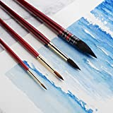 Paul Rubens Watercolor Paint Brushes
