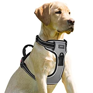 Petacc No-Pull Dog Harness