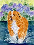 Caroline's Treasures SS8619CHF Nova Scotia Duck Toller Flag Canvas, Large, Multicolor Review