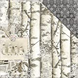 "Bo Bunny BBU20901826 Winter Wishes 12"" X 12"" Scrapbooking Paper"